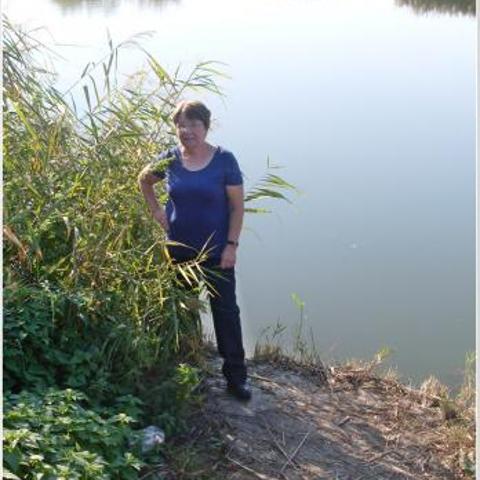 Marcsi, 67 éves társkereső nő - Gyermely