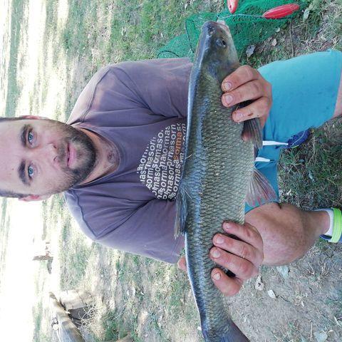 Laci, 36 éves társkereső férfi - Doboz