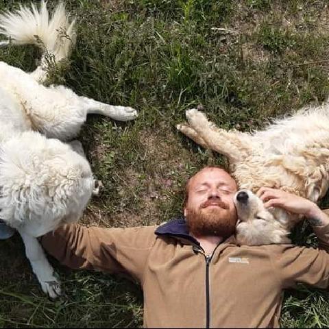 Nomád, 35 éves társkereső férfi - Budakalász