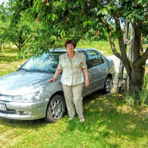 Anikó, 64 éves társkereső nő - Sátoraljaújhely