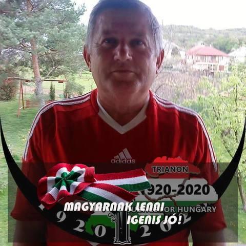 István, 66 éves társkereső férfi - Bodajk
