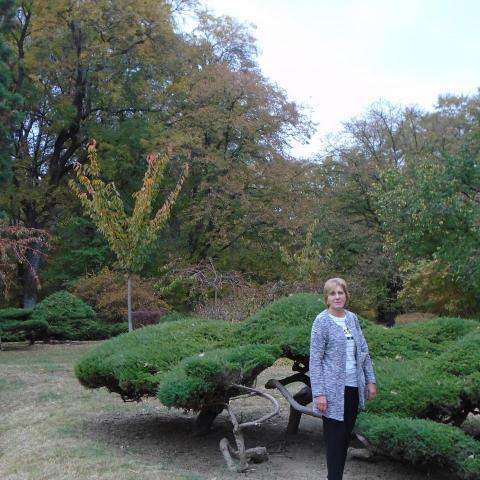 Teri, 62 éves társkereső nő - Jászberény