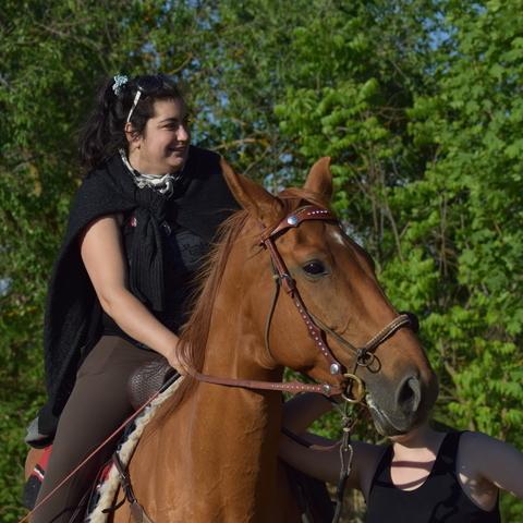 társkereső ló barátok meeting béna ember