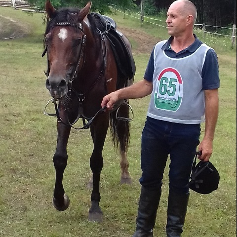 Ferenc, 52 éves társkereső férfi - Akasztó