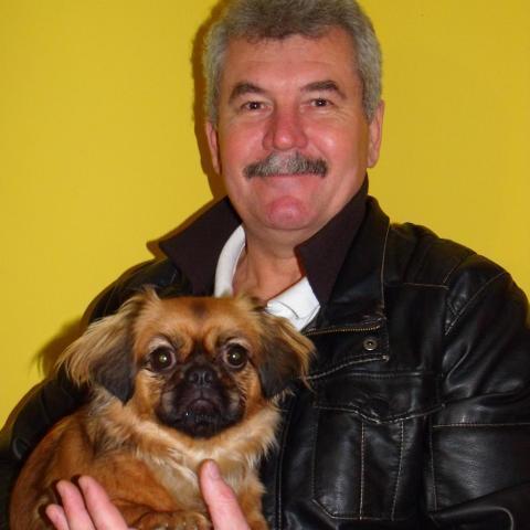 Zoltán, 59 éves társkereső férfi - Nagykanizsa