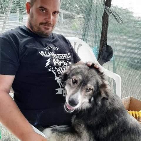 Gábor, 35 éves társkereső férfi - Albertirsa