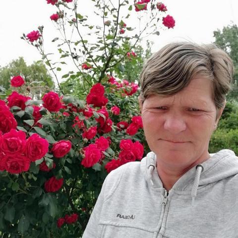 Anikó, 49 éves társkereső nő - Nyíregyháza