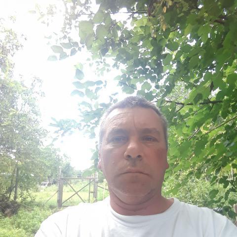 Géza, 46 éves társkereső férfi - Enying