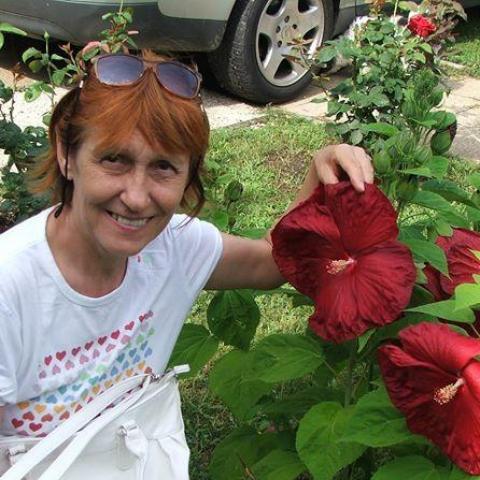 Annamária, 66 éves társkereső nő - Tárnok