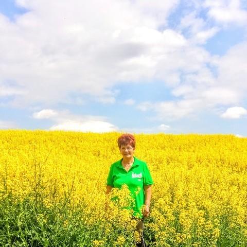 Piroska, 67 éves társkereső nő - Kaposvár