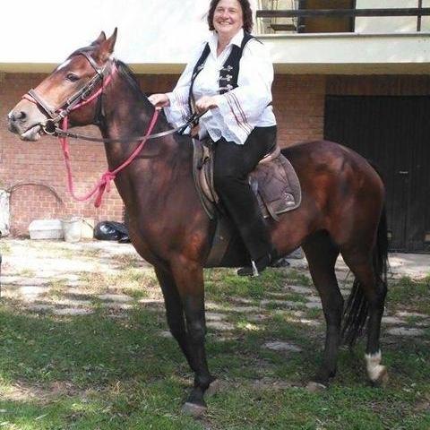 Zsuzsi, 58 éves társkereső nő - Szada