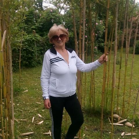Rozi, 62 éves társkereső nő - Békéscsaba