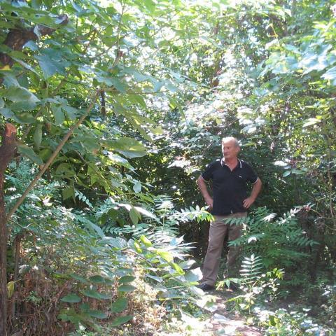 Sándor, 69 éves társkereső férfi - Debrecen