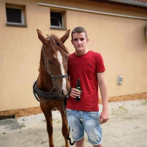 Csabi, 19 éves társkereső férfi - Németkér