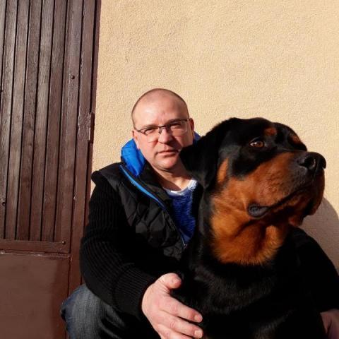 Roberto, 44 éves társkereső férfi - Zalaegerszeg