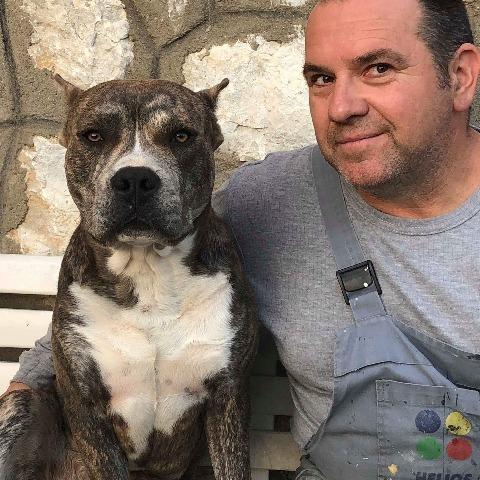 Pèter, 51 éves társkereső férfi - Bükkzsérc