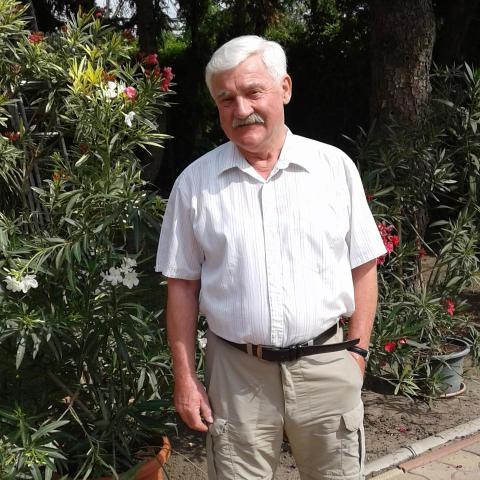 Miklós, 74 éves társkereső férfi - Szigetszentmiklós