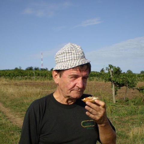 Sándor, 72 éves társkereső férfi - Nyíregyháza