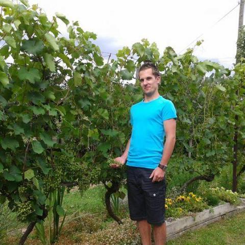 Daniel, 32 éves társkereső férfi - Nagykanizsa