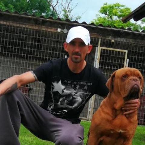 Zsolt, 38 éves társkereső férfi - Dévaványa
