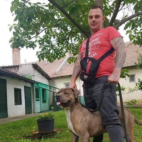 Ramos, 26 éves társkereső férfi - Szeged