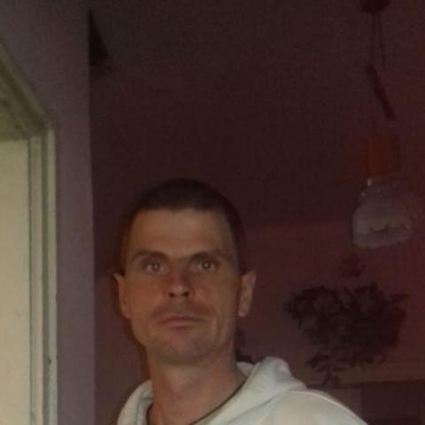 Imre Zsolt, 36 éves társkereső férfi - Ófehértó