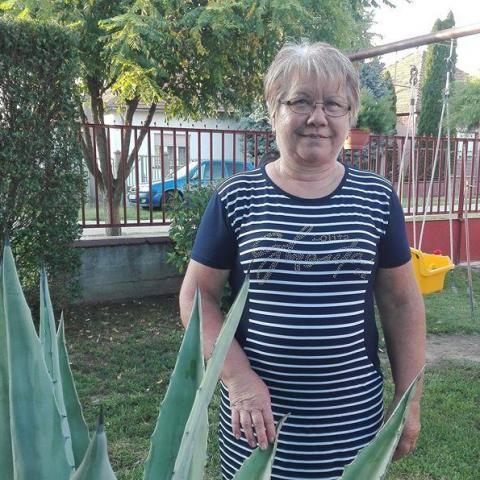 Rózsa, 60 éves társkereső nő - Tolna