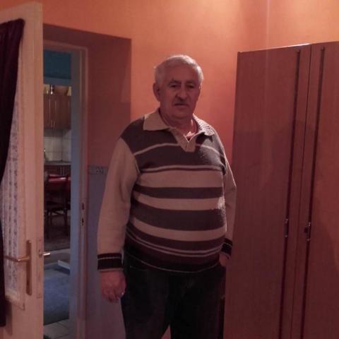 Gusztáv, 67 éves társkereső férfi - Mezőkövesd