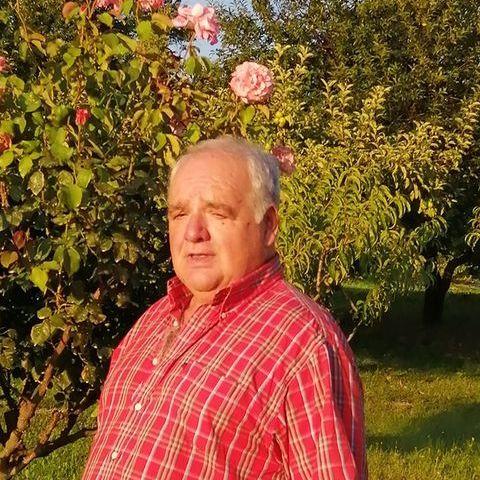 Csaba, 64 éves társkereső férfi - Mór