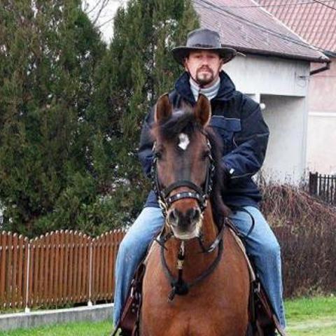 Zoltán, 37 éves társkereső férfi - Magyaralmás
