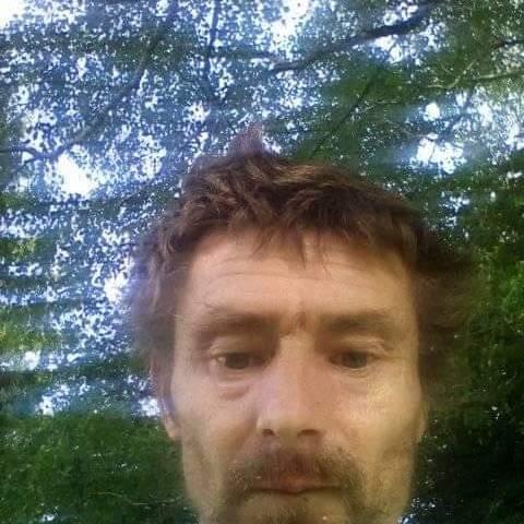 Gyula, 43 éves társkereső férfi - Tófej