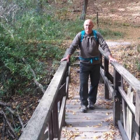 Rudolf, 68 éves társkereső férfi - őrbottyán