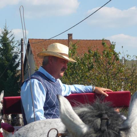 Ferenc, 61 éves társkereső férfi - Varsány