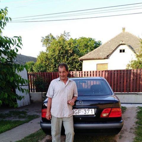 Ferenc, 64 éves társkereső férfi - Tengelic