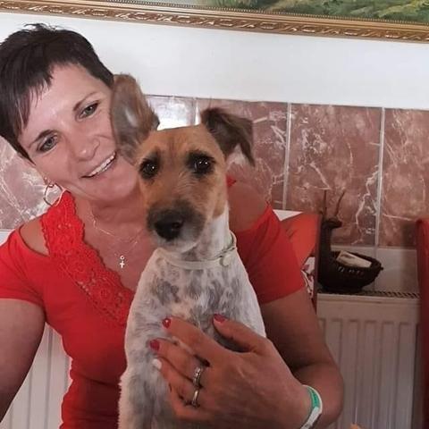 Piroska, 54 éves társkereső nő - Lovasberény