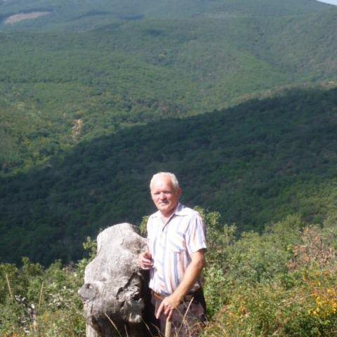 Kálmán, 71 éves társkereső férfi - Cserépfalu
