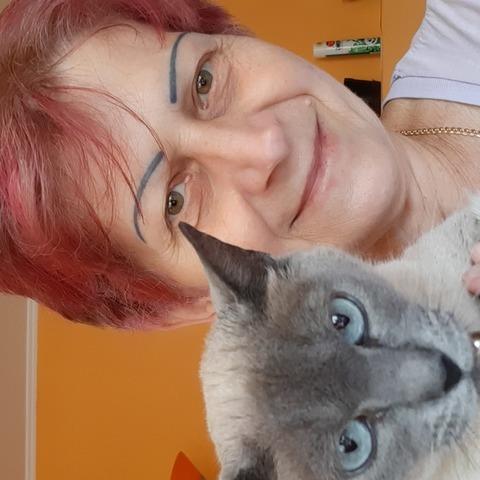 Marika, 55 éves társkereső nő - Szendrő