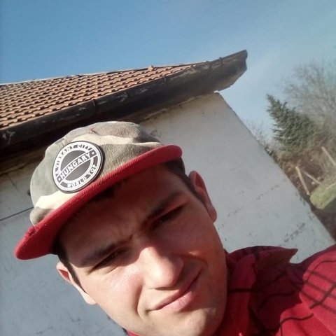 Dániel, 22 éves társkereső férfi - Szorgalmatos