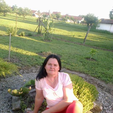 Mária, 56 éves társkereső nő - Szeghalom