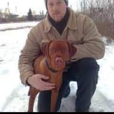 Ádám, 51 éves társkereső férfi - Debrecen