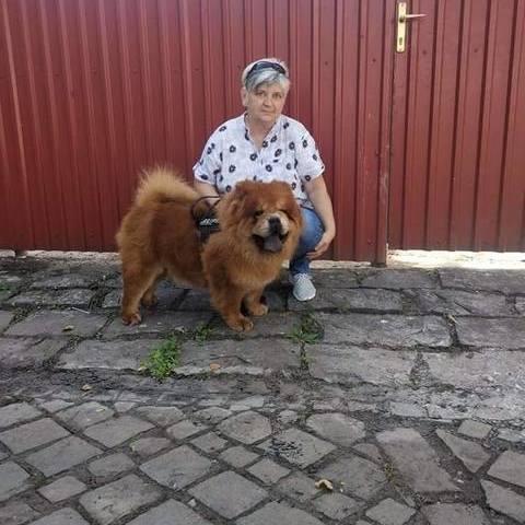 Tünde, 59 éves társkereső nő - Miskolc