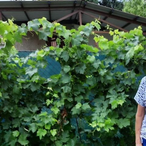 Erzsi, 71 éves társkereső nő - Szigethalom