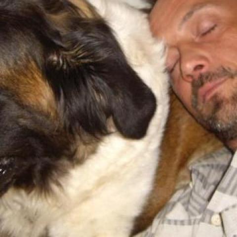 Attila, 45 éves társkereső férfi - Hort