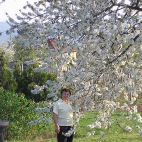 Mária, 68 éves társkereső nő - Sümeg