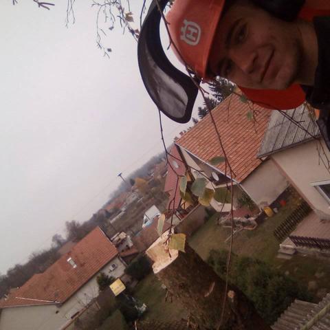 Csaba, 19 éves társkereső férfi - Dejtár