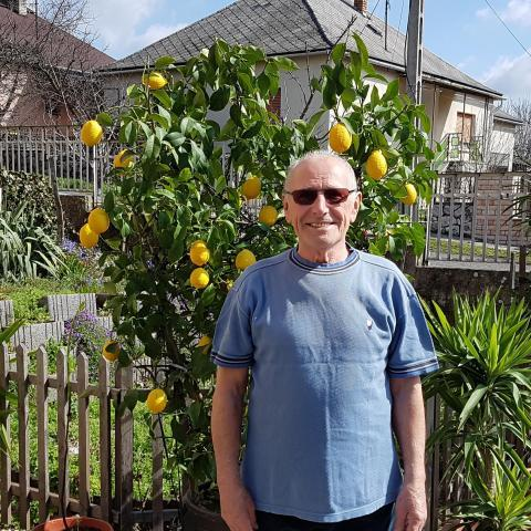 Gyula, 80 éves társkereső férfi - Bonyhád