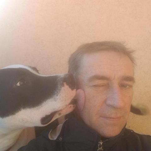 Attila, 51 éves társkereső férfi - Szigethalom