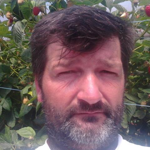 Janos, 48 éves társkereső férfi - Medgyesegyháza