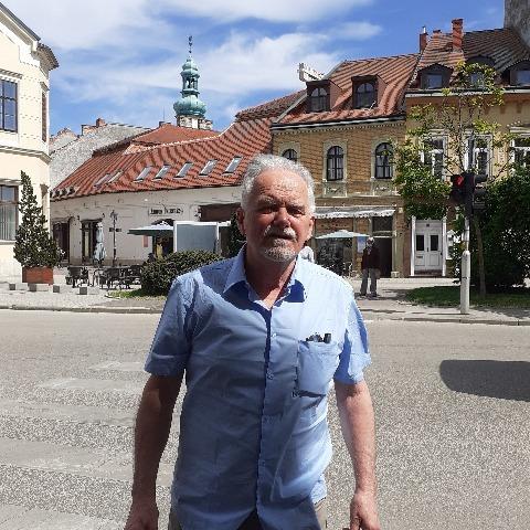 Gyula, 71 éves társkereső férfi - Diósd