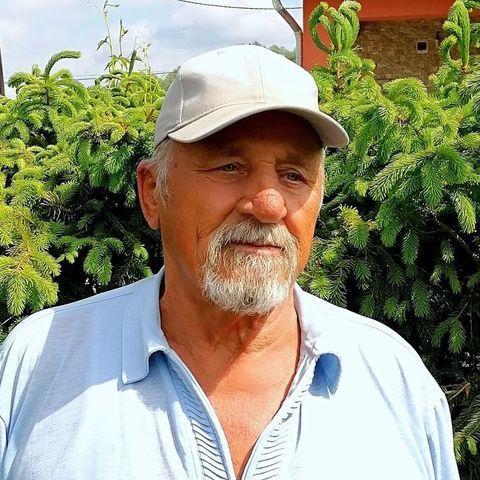sándor, 75 éves társkereső férfi - Nemti